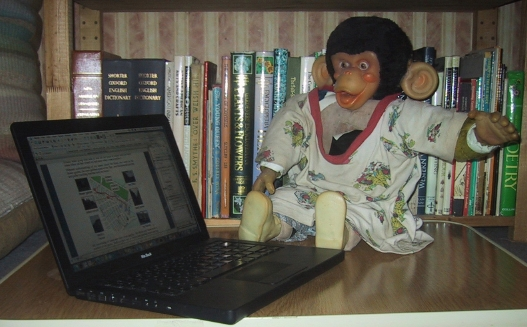 my monkey at the computer